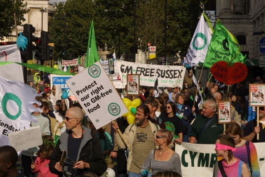 Actions against GMO in United Kingdom